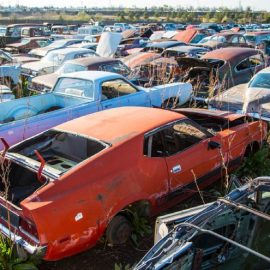 This Colorado Parts Yard has been Collecting Classic Cars for Decades
